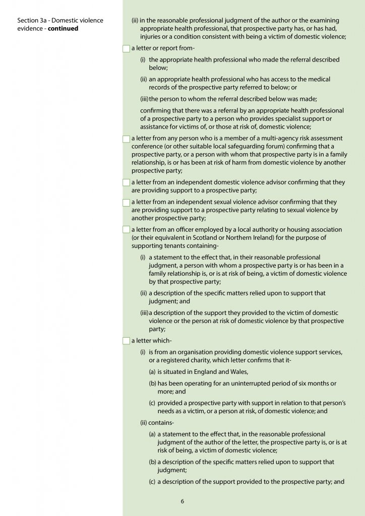 Screenshot of Page 6 – Domestic violence evidence - continued