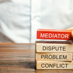 Who pays for mediation?